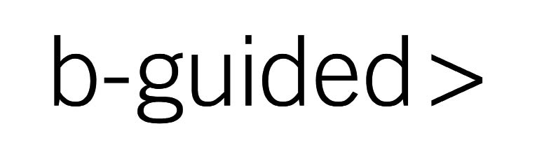 Logo B-guided_opt